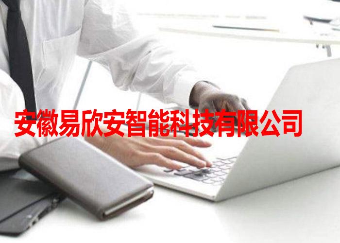 安徽易欣安智能科技有限公司